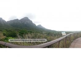 Viagem para África do Sul - foto -14
